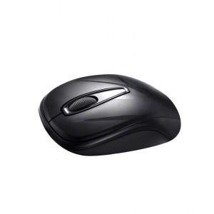Delux DLM 107GX Black Wireless Mouse