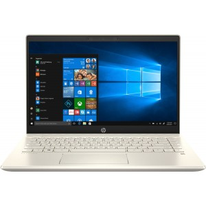 HP Pavilion 14-ce3044TX-i5 10th Gen 4GB 1TB 2GB Nvidia MX130-14 Inch FHD Wine Gold